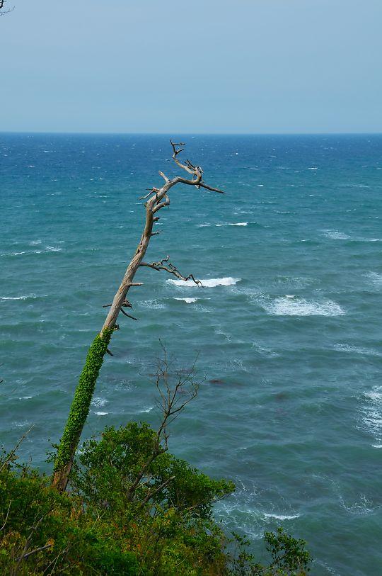加佐の岬1