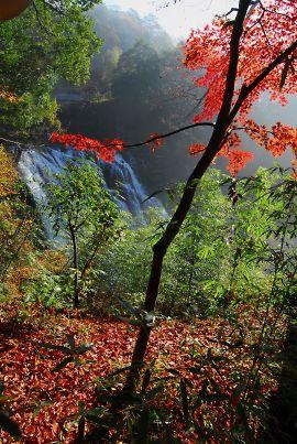 晩秋・龍門の滝