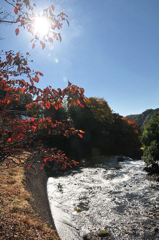 色づく季節