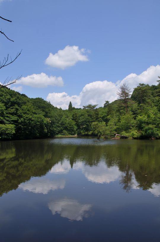 田んぼ公園