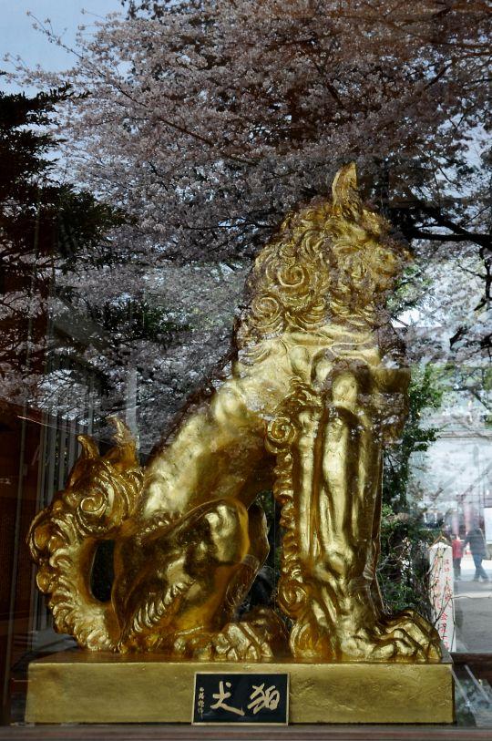 黄金の狛犬