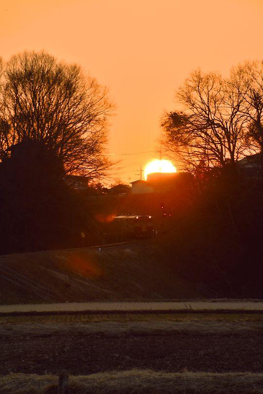 夕日を背に