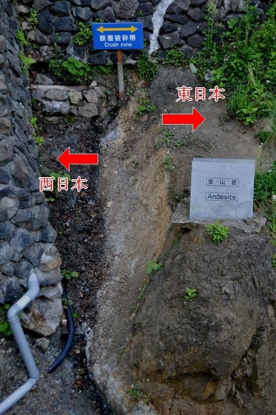 江川の地質
